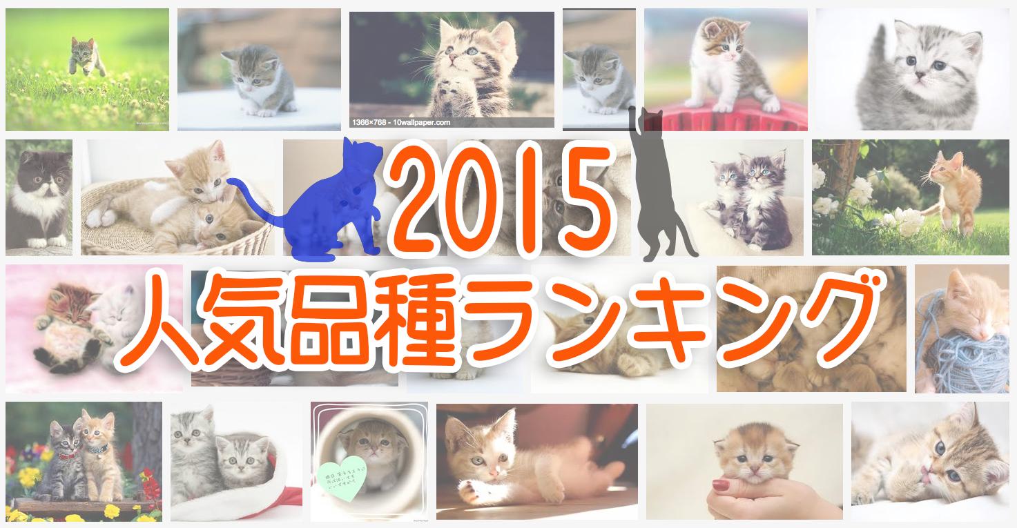 2015猫品種ランキング