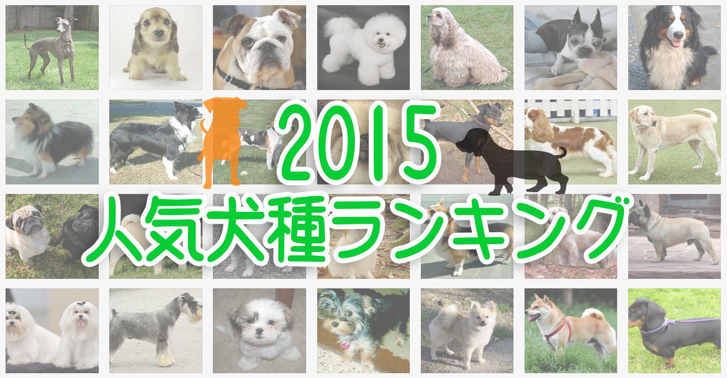 2015人気犬種ランキング